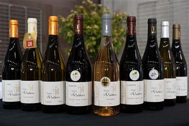 Découverte : carton de nos 6 vins en promo/dégustation