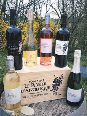 Caisse découvertes de six bouteilles pour le plaisir de tous