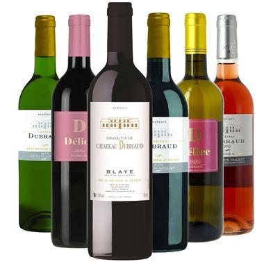Découverte 6 vins Château Dubraud