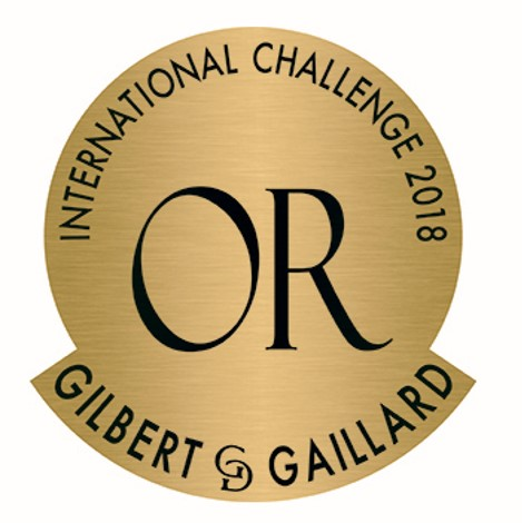 International Challenge Gilbert et Gaillard 2019 : Médaille d'or